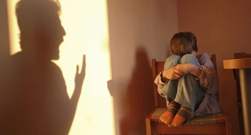 Exposure to Violence Child's Developing Brain