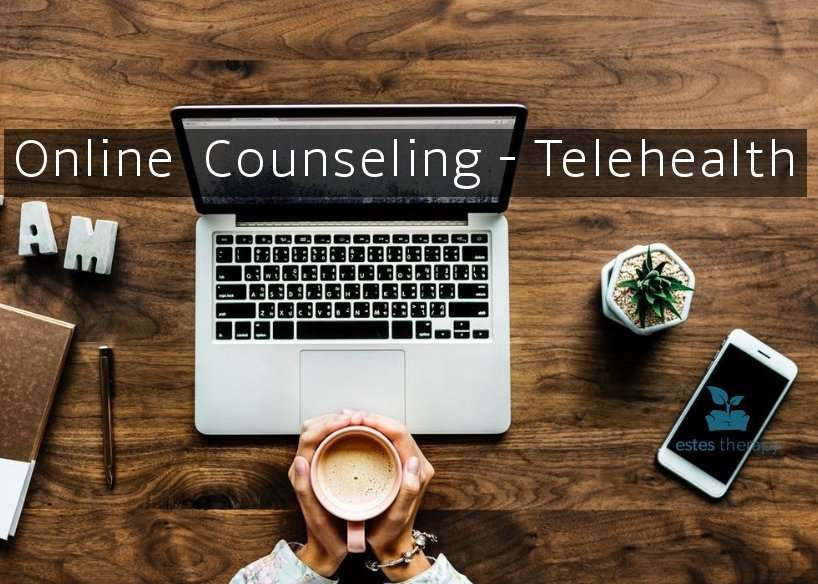 Online Counseling - Telehealth
