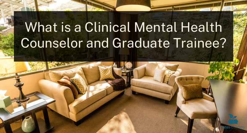 clinical mental health counseling graduate trainee practicum therapy therapist family therapist couples counseling trauma PTSD low cost counseling